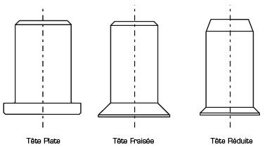 goinsert-formes-tetes